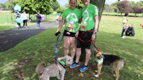 Dog Jog Glasgow