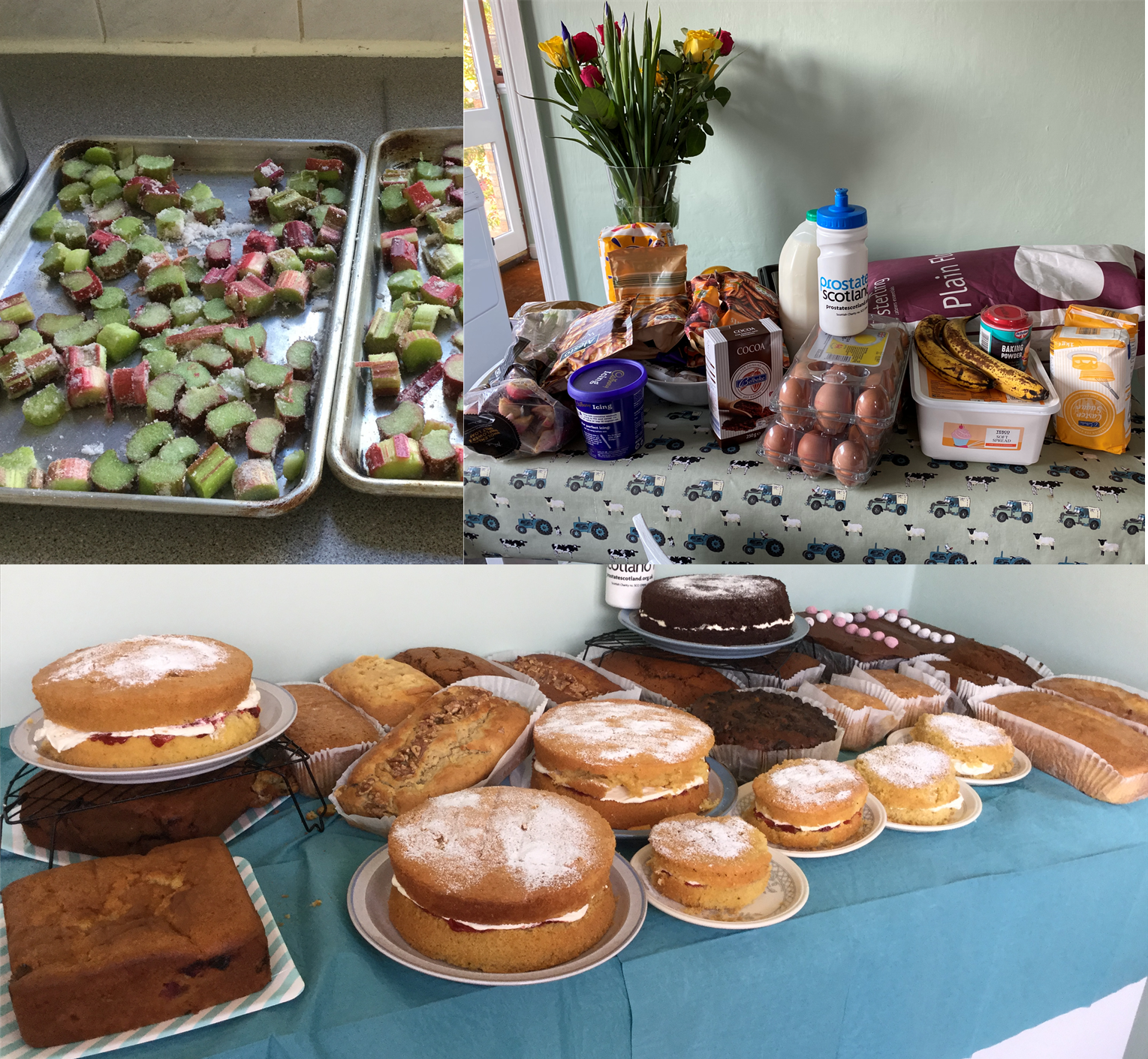 Linda's cakes Prostate Scotland
